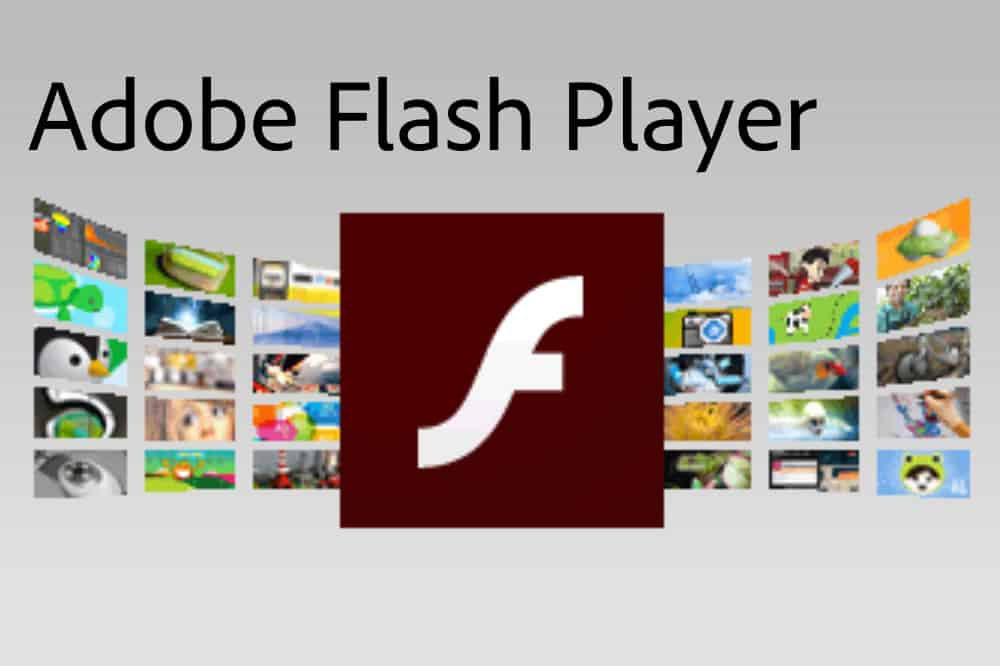 flash media player free download