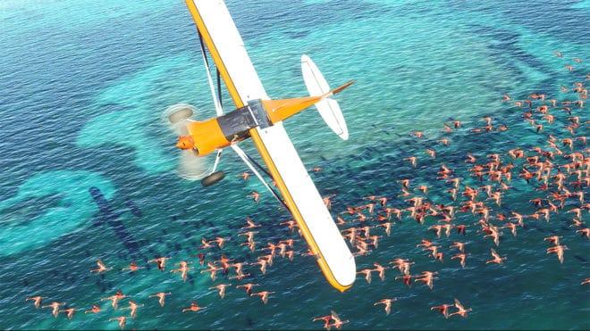 Microsoft Flight Simulator et ses folles configurations.
