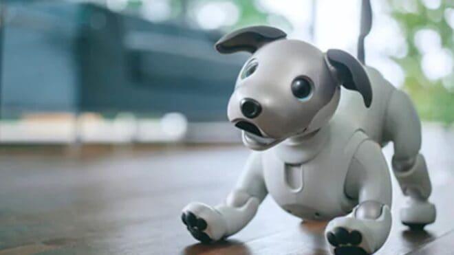 robot Sony Aibo